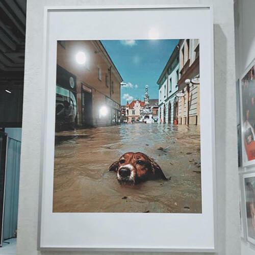 Výstava Petra Joska Tak jsem fotil